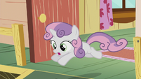 Sweetie Belle chases after Diamond Tiara S5E18