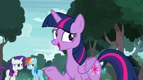 Twilight Sparkle -that happens between pals- S8E17
