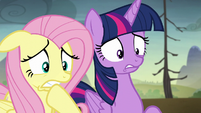 Twilight and Fluttershy frightened S5E23