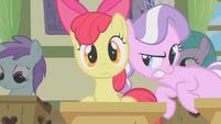 Apple Bloom and Diamond Tiara -psst!- S01E12