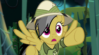 "Daring Do ""but the temple traps"" S9E21"
