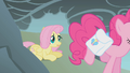 Fluttershy observes Pinkie jump over the cliff S1E07.png