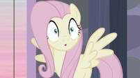 Fluttershy realizes the plan S5E02
