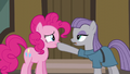 """Maud Pie """"gift giving isn't a competition"""" S6E3.png"""