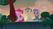 "Pinkie Pie ""your amazing boyfriend's idea"" S8E3"