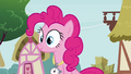 Pinkie Pie 'After doing a double flip' S3E3.png