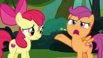 "Scootaloo ""strangest thing I've ever heard"" S7E21"
