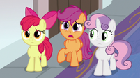 Scootaloo -isn't this place for everycreature-- S8E12