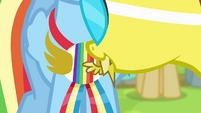 Spitfire gives Wonderbolt pin to Rainbow S4E10
