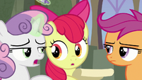 "Sweetie Belle ""you forgot the cons"" S8E6"