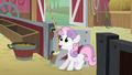 Sweetie Belle ringing the bell S01E18.png