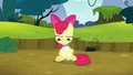 """Apple Bloom """"that's not funny"""" S5E4.png"""