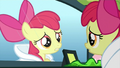 Apple Bloom 'This is my first time meeting her' S3E4.png