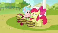 Apple Bloom -special somepony's waitin' for 'em- S8E12