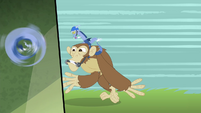 Discord riding on a monkey S4E11