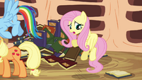 Fluttershy 'Yes, but, um, you can't' S3E05