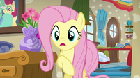 Fluttershy --don't you remember last time--- S6E11