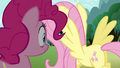 Fluttershy flying over to bush S3E3.png