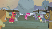 "Pinkie Pie ""when the three tribes united"" S5E20"