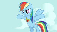 Rainbow Dash giving her opinion on the matter S3E10
