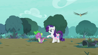 "Rarity ""your stone scales look worse!"" S8E11"