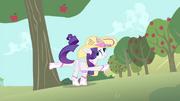 S04E13 Rarity strąca jabłka