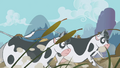 Stampeding cows S1E04.png