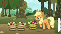Applejack gathering apples in baskets S7E11