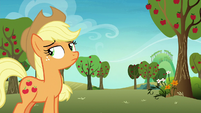 Applejack unfazed by Rainbow's wailing S8E5