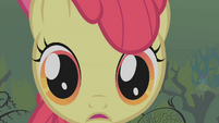 Close up of Apple Bloom S1E09