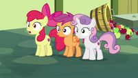 Cutie Mark Crusaders stop celebrating S8E12