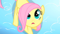 Filly Fluttershy looking up S1E23.png