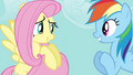 Fluttershy 'sorta excited' S4E04.png