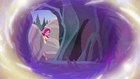 Gloriosa Daisy squeezing past the boulders EG4