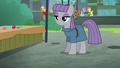 Maud Pie nearly at the sidewalk S6E3.png