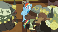 More yaks shush Rainbow Dash S8E18
