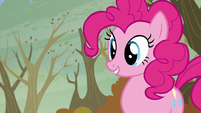 Pinkie -Which one-- S5E5