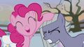 Pinkie pats Limestone on the head S5E20.png