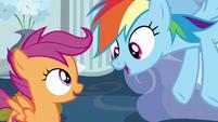 Rainbow Dash --I'm all over it!-- S6E14