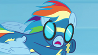 Rainbow Dash --my name's not Crash!-- S6E7