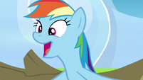 Rainbow Dash calling herself awesome S7E7