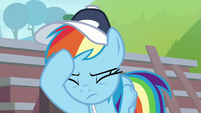 Rainbow Dash hoof meets face S9E15