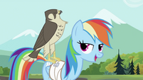 Rainbow Dash with the falcon 2 S2E07