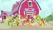 S03E08 Rodzina Apple zebrana do zdjęcia