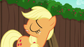 """Applejack """"are you an Apple"""" S6E14.png"""