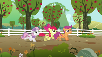 Cutie Mark Crusaders looking for Gabby S6E19