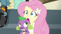 "Fluttershy ""are you okay?"" EGS1.png"