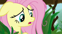 "Fluttershy ""not fluffy enough?"" S9E18"