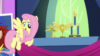 Fluttershy asks Rainbow about her trophies S5E3