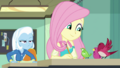Fluttershy settles an argument between birds EGDS10.png